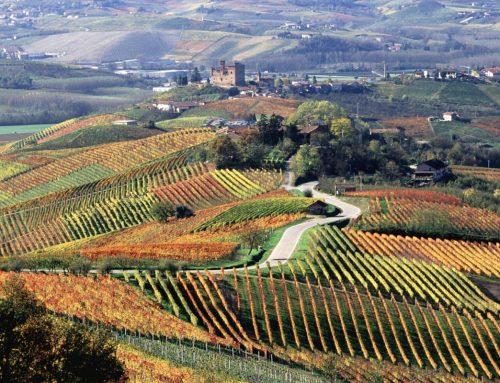 En lördag i Piemontes tecken!